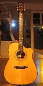 Gitarre von Tomek